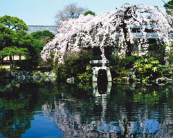 Ryusenen Garden (Nationally registered tangible cultural property)