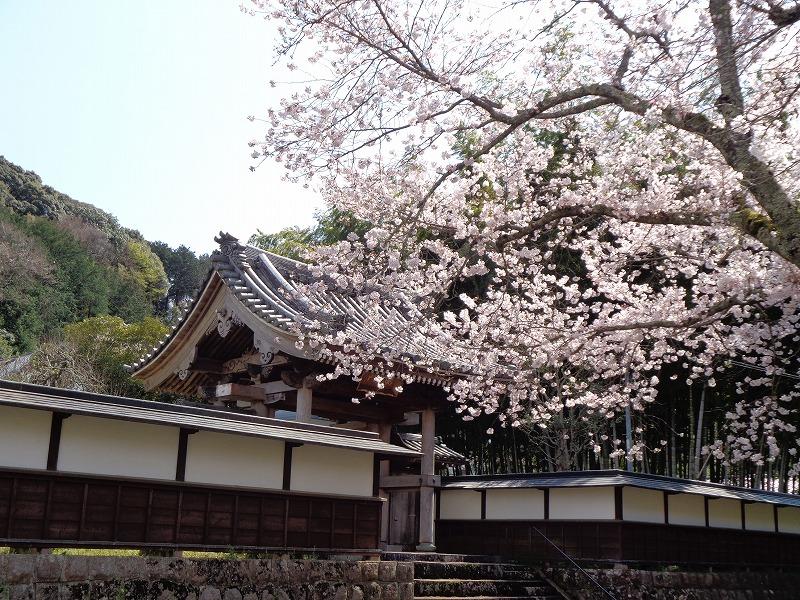 玉澤妙法華寺
