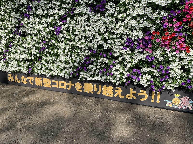 みしま花のまちフェア ガーデンシティみしま