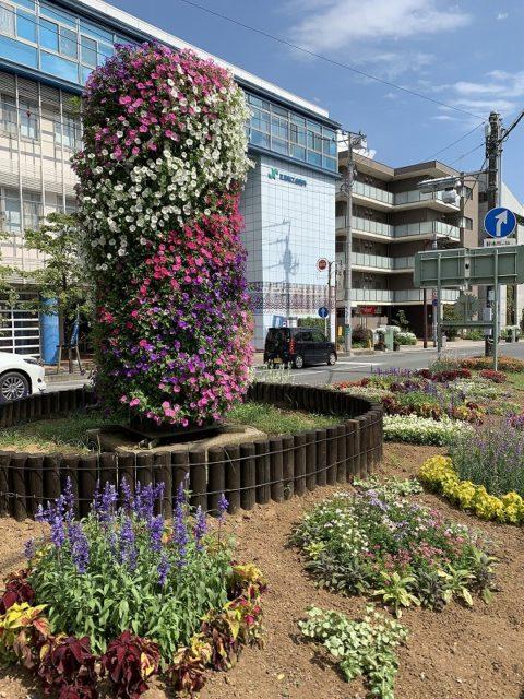 愛染院跡の溶岩塚 花のオブジェ 花のまちフェア