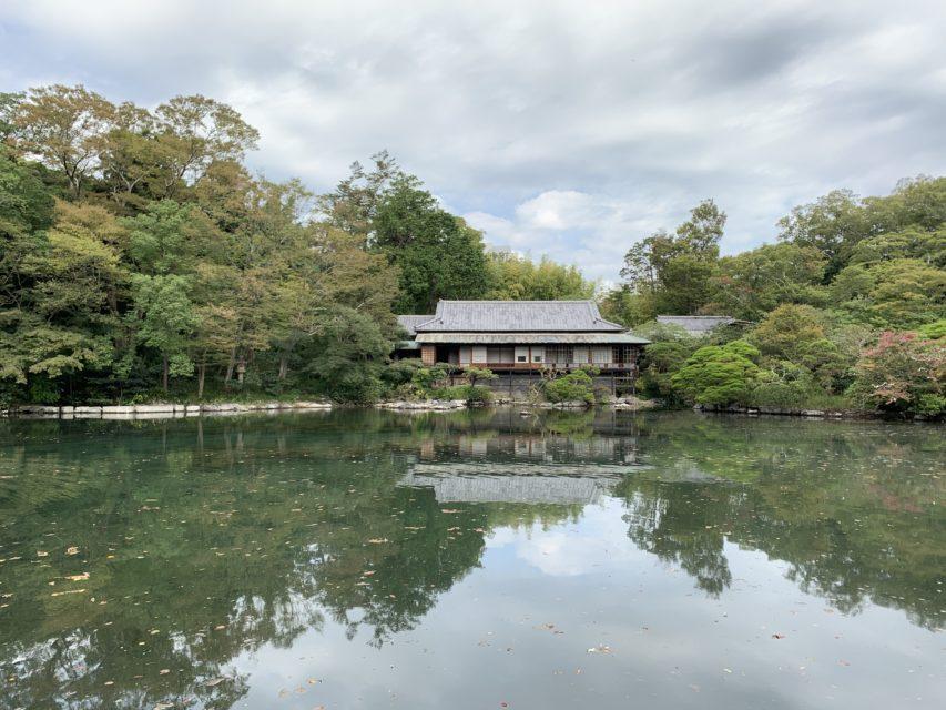 楽寿園 小浜池 満水